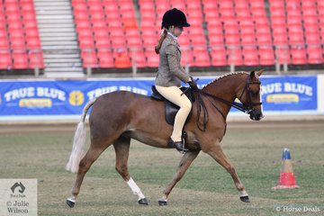 Hannah Riley rode the Pinetrees Horse and Pony Stud nomination, 'Bellrose Maximus' to win the class for Novice Show Hunter Pony 12-12.2hh.