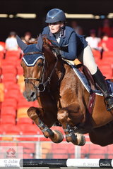 Not long out of Young riders, Brooke Langbecker outrode her more senior peers today to win the Section 1 Jump Off class riding her super imported stallion, 'Quintago 1' by Quidam de Revel.