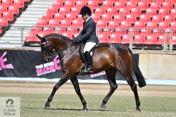 Sandra Henry rode her own and Alan Henry's, 'Macathur Park Hot Topic' to win the class for Novice Hack 15-15.2hh and went on to takeout the Best Novice Hack award