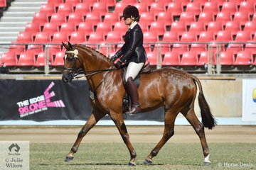 Rebecca Gerber rode her , 'Elmdale Park Hightime' to second place in the class for Novice Hack 15-5.2hh.