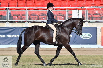 Elizabeth Taylor won the class for Open Show Hunter Galloway 14.2-15hh with her, 'EBL One Night In Paris' and today claimed the Show Hunter Galloway Championship