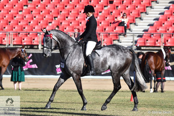 Melissa Ovens', 'Lazer Envy' took second place in the class for Novice Hack Over 16.2hh.