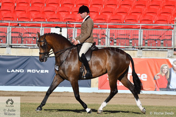 Greg Mickan rode the Romsey Park and Terry van Heythuysen nomination, 'ETP La Scala' to take out the Show Hunter Reserve Championship.