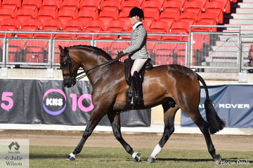 Adam Oliver won the Gent's Show Hunter class this morning and from there claimed the Show Hunter Championship with Rebecca Crane's impressive, 'Federer'. Yesterday Adam was declared Champion Gentleman rider.