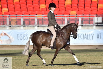 The Show Hunter ponies were a win for the Owendale stud. Kate Kyros is pictured aboard her well performed, 'Owendale Beesting' that was declared Champion Small Show Hunter Pony.
