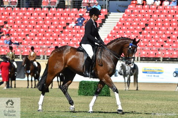 Kerrie O'Neill's, 'Whispering Jack' took third place in the class for Novice Hack 15.2-16hh.