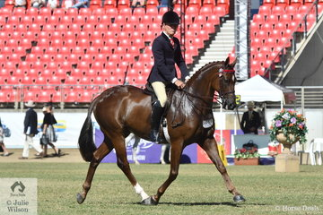 Michael Christie rode Joh Bailey's, 'Arpels' by Encosta de Lago to take second place in the class for Novice Hack 15.2-16hh.