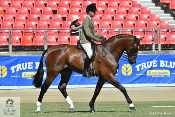 Dashing between the showjumping ring and the hack ring, Rhys Stones rode Matilda Longbottom and the J and R Equestrian nomination, 'Powerplay' to take second place in the class for Gent's Show Hunter.