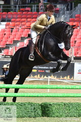 Jumping professional, Jennifer Wood stepped aboard the Diamond B Farm nomination, 'Diamond B Bone Fides' to win the class for Working Hunter Over 15h.