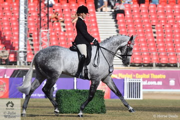 """Such a beautiful, elegant horse and a worthy Col AV Pope Cup winner. Kaitlin Labahn- Meyland rode Michelle Labahn's, 'Rolex II' to be the winner of the class for """"Geldings over 15hh Showing Thoroughbred Qualities"""" with the two judges, hack judge, Maree Tomkinson and Thoroughbred judge, Joe Pride."""