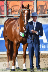 A handsome pair. Mitchell Taff did the honours this afternoon with the Westcoast Castle P/L nomination, the stallion, 'Lord Larmarque' (Locksley II/Veroska) that was declared Champion Stallion/Colt and Supreme Champion Led Arabian Derivative. The good looking, imported stallion is also the horse Para Euestrian rider, Sharon Jarvis is pining her hopes on for the Tokyo Olympics.
