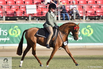 The Corvan Park, Corbett, Walker and McMaster nomination,'Newington Indulgence' won the class or Australian Saddle Pony N/E 12.2hh and was declared Reserve Campion Ridden Australian Saddle Pony.