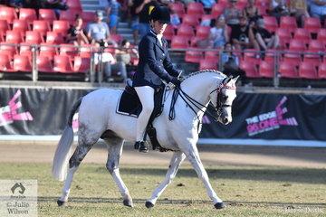 The Stepdon Park, Fernbrook Stud, Ball and Paris nomination, 'Imperial Proclaim' won the class for Australian Saddle Pony Ridden Stallion.