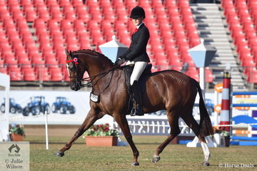 Ali Berwick rode her own and Emma Barkla's nomination, 'Royal Oak Foreign Affairs' to win the class for Open Hack 15-15.2hh