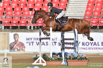 Amelia Douglass is pictured aboard her imported, 'Barrichello' during the Part Three jump off class this morning.
