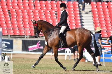 Adam Oliver rode the Universal Stables and  Munce Racing nomination, 'Mestalla' to take second place in the class for Open Hack 16-16.2hh.