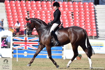 Syenna Vasilopoulos rode her lovely, 'High Fashion' to take sixth place in the class for Open Hack 16-16.2hh.