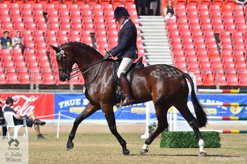 Successful dressage and showing rider, Mark Kiddle rode the M and M Performance Horses, Pavia and Samsa nomination, 'Attorney' to fourth place in the class for Open Hack Over 16.2hh and to win the Gent' Hack class.