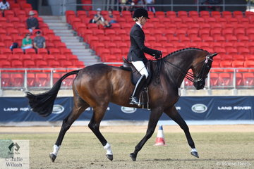 With her usual  beautiful workout, Rebecca Farrow claimed the Open Over 16.2hh class with her, 'Stage Presence'.