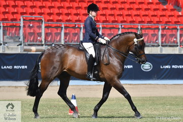 Tess O'Connor rode her own and Stephanie O'Connor's, 'D'Artagnan' to win the class for Arabian Derivative Gelding Over 15hh.