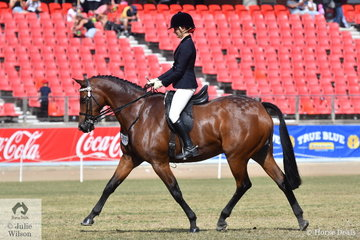 Veronica and Alexandra Langthorne's, 'Willowcroft New York' took second place in the class for Arabian Derivative Gelding Over 15hh.