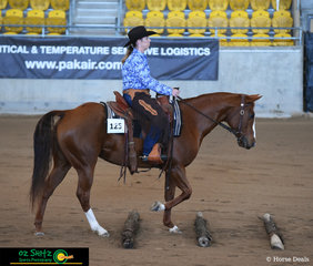 Annette Ryan and CFR's Chilled Chick make their way over the poles at the beginning of the AO Ranch Riding Pattern at the 2019 Paint Horse Nationals.