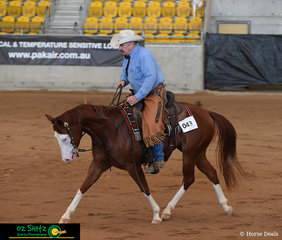 Paris Enterprise really stepped out in the Open Ranch Riding which was held on the first day of the 2019 Paint Horse National Championship ridden by Jeffrey Hall.