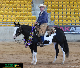Stylish Gun Model ridden by Rod Shaw owned by Rod and Gail Shaw took the title of Senior Ranch Horse Versatility at the 2019 Paint Horse National Show.