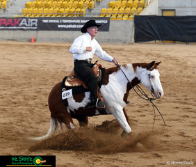Sliding into first place in the Senior Horse Reining class was exhibit 39, Great Guns ridden by Rod Shaw at the 2019 Paint Horse National  Championships held at Tamworth.