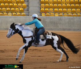 Sending JF Brooks Bandit home in the Open Barrel race was Samantha Johnston at the 2019 Paint Horse National Championship.