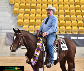 Day one of the 2019 Paint Horse National Championship saw Tronas Limited Edition ridden by Jeffrey Hall and owned by Phillipe and Veronique Joubert win the Junior Ranch Horse Versatility.
