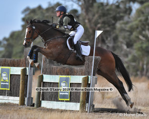 """Winner of the Pony Club Grade 2 section, Laura Bell riding """"Old Bill"""" winning on a final score of 49"""