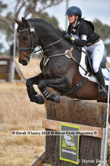 """Annabel Nelson placed 5th in the Open Grade 1 riding """"WS Poncho Loco"""" with a final score of 168"""
