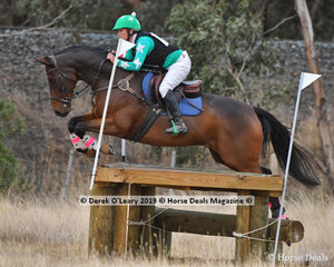 """Louise Abey placed 3rd in the Open Grade 1 riding """"Sail On By"""" with a final score of 127"""