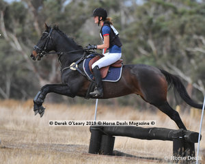 """Emily Walsh rode """"Carl"""" in the Opne Grade 4.2 placing 9th"""