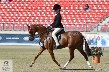 Ella Manning is pictured aboard Catherine Gale's, beautiful Open 11.2-12hh winner, 'Newington Tinkerbell'.