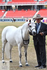 Jeffrey Perry is pictured with his Broodmare winner and Champion Australian Pony Mare, 'Nagero Summer Rose' (Rose Air Ambassador/Nagero Spring Rose).
