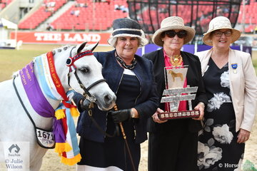 Longtime and successful Australian Pony breeder and exhibitor under the Koorana Stud nomination, Anne Gavin was delighted to claim the Champion Junior Exhibit and Supreme Led Australian Pony award with, 'Koorana Royal Dawn' (Koorana Royal Ambition/K Earl Dawn). Anne is pictured L-R with the Mrs CM McLean Memorial Perpetual Trophy presenter, Angela Kjeldsen and judge, Tracey McGovern.