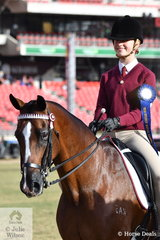 On day twelve of the Royal Easter Show when just about everyone else is ready to go home, the Pony Club riders arrive full of enthusiasm. Brielle Powell looks delighted to have won the tough class for Pony Club Rider 15 AU 17 Years.