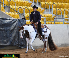 With Mark Ferguson in the saddle, FB On An Impulse won the 2 Year Old Western Pleasure class on the final day of the 2019 Paint Horse National Championship.