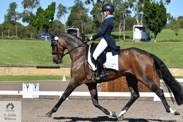 Amanda Ross rode Dicavalli Diesel to second place in the dressage phase of the Bates Saddles CCI4*-S with the score of 29.20. (Unfortunately there is no list of owners and horses breeding for this large class).