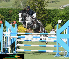 """Purchased from New Zealand just ten days ago the new combination Sam Morrison and her 8 year old Station Bred """"Elmo"""" placed 2nd in the Future Stars on Saturday"""
