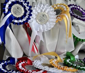 The Championships saw an amazing array of fantastic prizes on offer, thanks to the generous sponsorship of a large number of businesses.