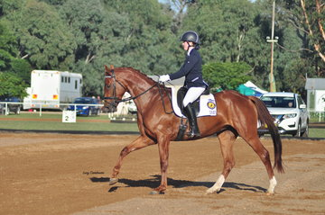 Macarthur Blossom M ridden by Brianna Cartwright won Preliminary Reserve Champion