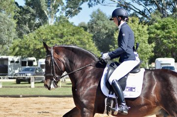 Istemela ridden by Megan Bryant
