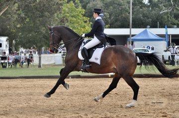 Michar ridden by Amy Reilly