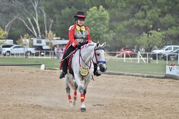 More Than a Miracle ridden by Kim Lang performed their Freestyle test to The Greatest Showman theme.