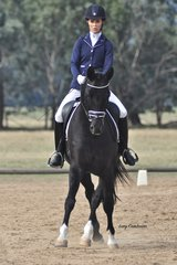 Desiree Imp ridden by Amy Reilly went on to win Preliminary Champion