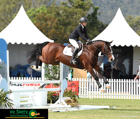 Katie Laurie and Queen Bee GNZ take on the open liverpool with ease in the 6 Year Old class