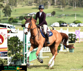 Chloe Hughes and her 5 year old Warmblood Gelding Ketut sired by Calgary GNZ by Balou Tristram Mare competed in the 5 year old class and Jumped double clear to place 9th